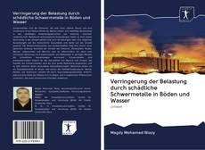 Verringerung der Belastung durch schädliche Schwermetalle in Böden und Wasser的封面