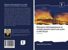 Portada del libro de Riduzione dell'esposizione ai metalli pesanti nocivi nel suolo e nell'acqua