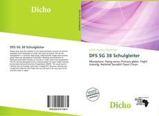 Bookcover of DFS SG 38 Schulgleiter