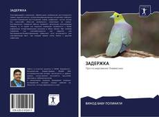 Bookcover of ЗАДЕРЖКА