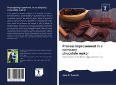 Bookcover of Process improvement in a company chocolate maker