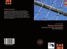 Capa do livro de Néstor Gorosito