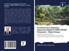 Copertina di Uczestnicząca diagnoza obszarów wiejskich (DRP) RESEX Chocoaré - Mato Grosso