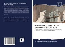 POSIBILIDAD LEGAL DE LAS UNIONES POLI-AFETIVAS kitap kapağı