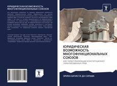 Bookcover of ЮРИДИЧЕСКАЯ ВОЗМОЖНОСТЬ МНОГОФУНКЦИОНАЛЬНЫХ СОЮЗОВ