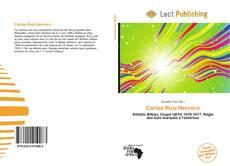 Bookcover of Carlos Ruiz Herrero