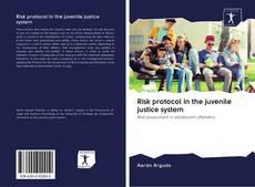 Borítókép a  Risk protocol in the juvenile justice system - hoz