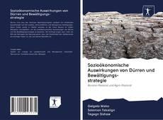Capa do livro de Sozioökonomische Auswirkungen von Dürren und Bewältigungs- strategie