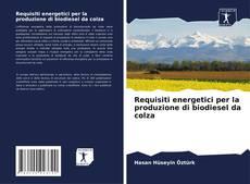 Copertina di Requisiti energetici per la produzione di biodiesel da colza