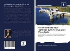 Piezometrie und neue Techniken zur Erkennung von Wasserlecks kitap kapağı