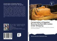 Portada del libro de Conservation of Egyptian Mummy Stuffed With Cotton Under Wrapping