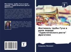 """Bookcover of Фестиваль трубы Гуча в роли лидера """"Туристического роста"""" Драгачево"""