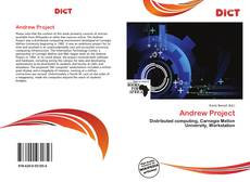 Bookcover of Andrew Project