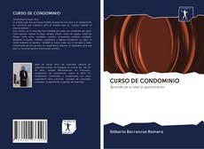 CURSO DE CONDOMINIO的封面