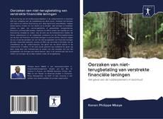 Обложка Oorzaken van niet-terugbetaling van verstrekte financiële leningen