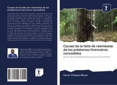 Обложка Causas de la falta de reembolso de los préstamos financieros concedidos