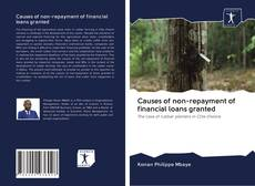 Обложка Causes of non-repayment of financial loans granted