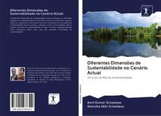 Bookcover of Diferentes Dimensões de Sustentabilidade no Cenário Actual