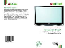 Konstantin Bronzit的封面