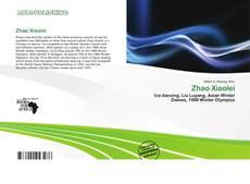 Portada del libro de Zhao Xiaolei