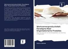 Copertina di Werknemersproductiviteit: Paradigma Naar Organisatorische Prestaties