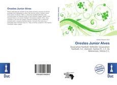 Portada del libro de Orestes Junior Alves