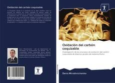 Обложка Oxidación del carbón coquizable