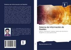 Sistema de Información de Gestión的封面
