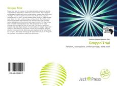 Bookcover of Groppo Trial
