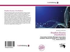 Bookcover of Stephen Kenny (footballer)