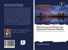 Borítókép a  Bestimmung der Effizienz des Exponential-Gamma-Modells - hoz