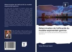 Capa do livro de Détermination de l'efficacité du modèle exponentiel-gamma
