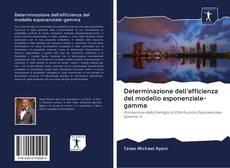 Capa do livro de Determinazione dell'efficienza del modello esponenziale-gamma