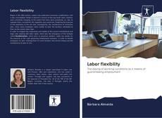 Bookcover of Labor flexibility