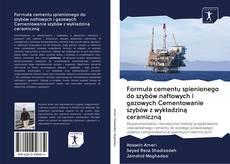 Bookcover of Formuła cementu spienionego do szybów naftowych i gazowych Cementowanie szybów z wykładziną ceramiczną