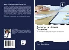 Borítókép a  Assurance de biens au Cameroun - hoz