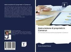 Borítókép a  Assicurazione di proprietà in Camerun - hoz