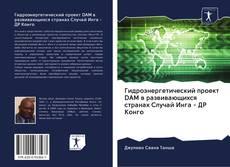 Bookcover of Гидроэнергетический проект DAM в развивающихся странах Случай Инга - ДР Конго