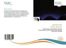 Buchcover von Delta Bootis