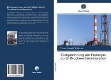 Bookcover of Rückgewinnung von Fackelgas durch Druckwechseladsorption