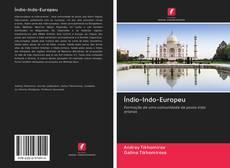Bookcover of Índio-Indo-Europeu