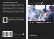 TEORÍA DE LA ORGANIZACIÓN的封面