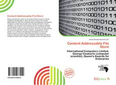 Bookcover of Content Addressable File Store