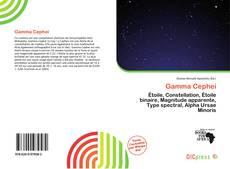 Buchcover von Gamma Cephei
