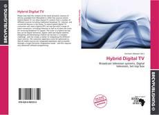 Bookcover of Hybrid Digital TV