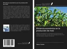 Bookcover of Eficiencia económica en la producción de maíz