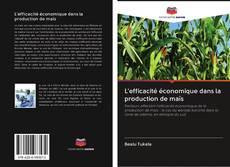 Copertina di L'efficacité économique dans la production de maïs