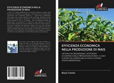 Portada del libro de EFFICIENZA ECONOMICA NELLA PRODUZIONE DI MAIS