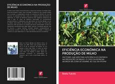 Copertina di EFICIÊNCIA ECONÓMICA NA PRODUÇÃO DE MILHO