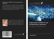 Explorando COVID-19: Las perspectivas y patrones的封面